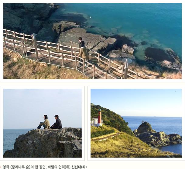 영화 종려나무 숲의 한 장면, 바람의 언덕(위) 신선대(좌)