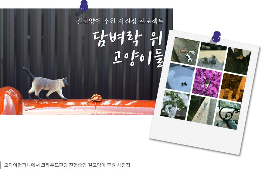 오마이컴퍼니에서 크라우드펀딩 진행중인 길고양이 후원 사진집